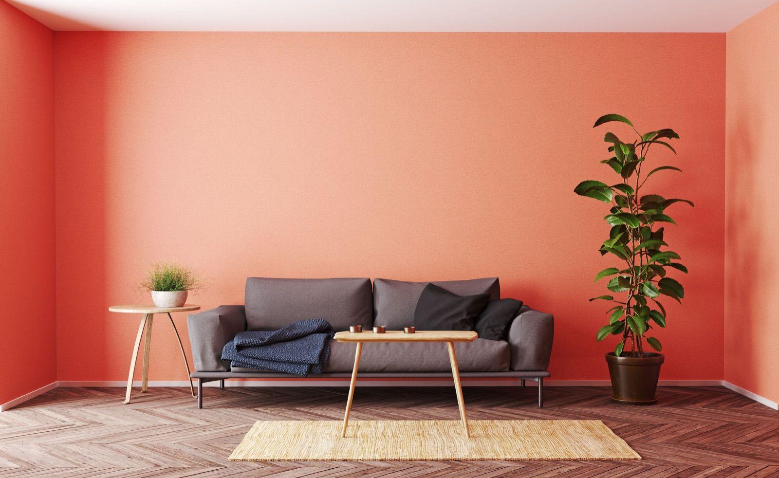 Farby stien: druhy farieb na steny